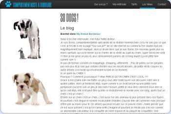 Cliquez pour visiter la page So Dogs !.