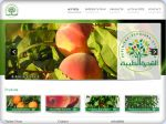 La vignette du site Production arbres fruitiers Tunisie,