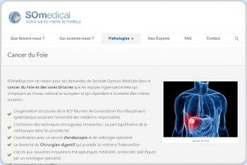 Cliquez pour visiter la page cancer du foie chimiothérapie.