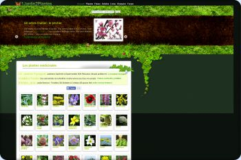 Cliquez pour visiter la page Les plantes médicinales.