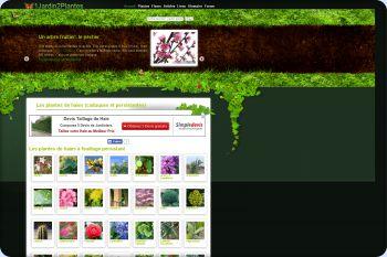 Cliquez pour visiter la page Les haies à feuillage caduc ou persistant.