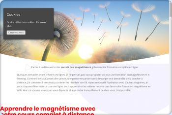 Cliquez pour visiter la page formation magnetisme en ligne.